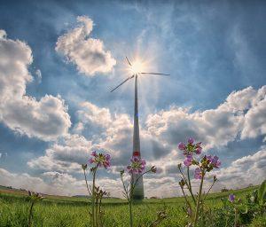 Tecnológica aplicada a la agricultura ecológica y avances